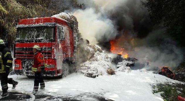verhalten brandfall aushang kostenlos