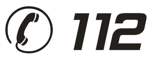 скачать игру через торрент Notruf 112 - фото 2